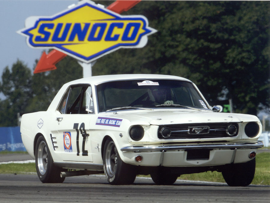 1966 Shelby Notchback Mustang